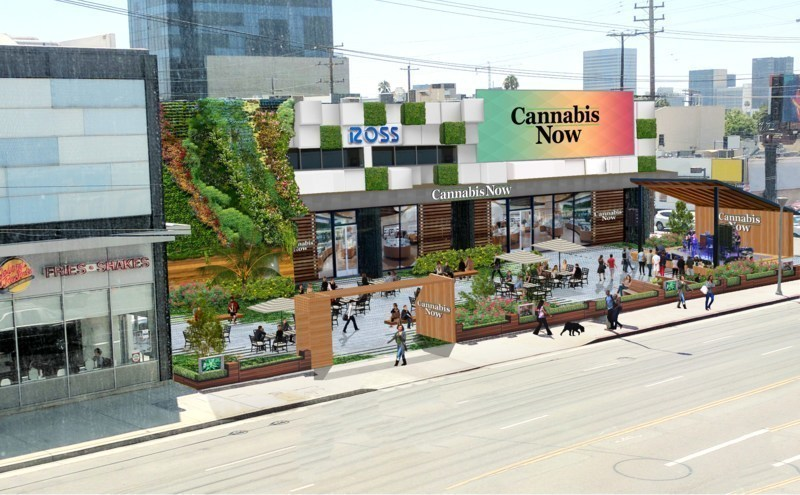 Cannabis Now Store Front